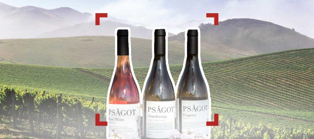 الاحتلال يصنّع النبيذ من كروم الضفة ويصدّرها
